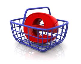 Internet et l'Automobile : les e-shoppers